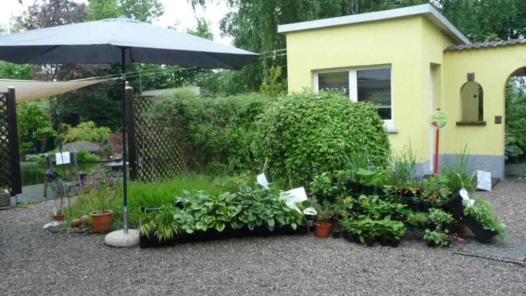 Boutique au jardin chez pia et alain - La boutique du jardin ...