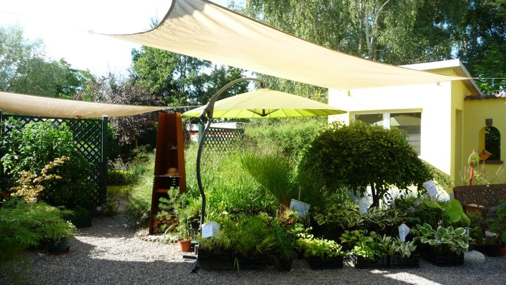 Nouveaut au jardin chez pia et alain for Faire de l ombre